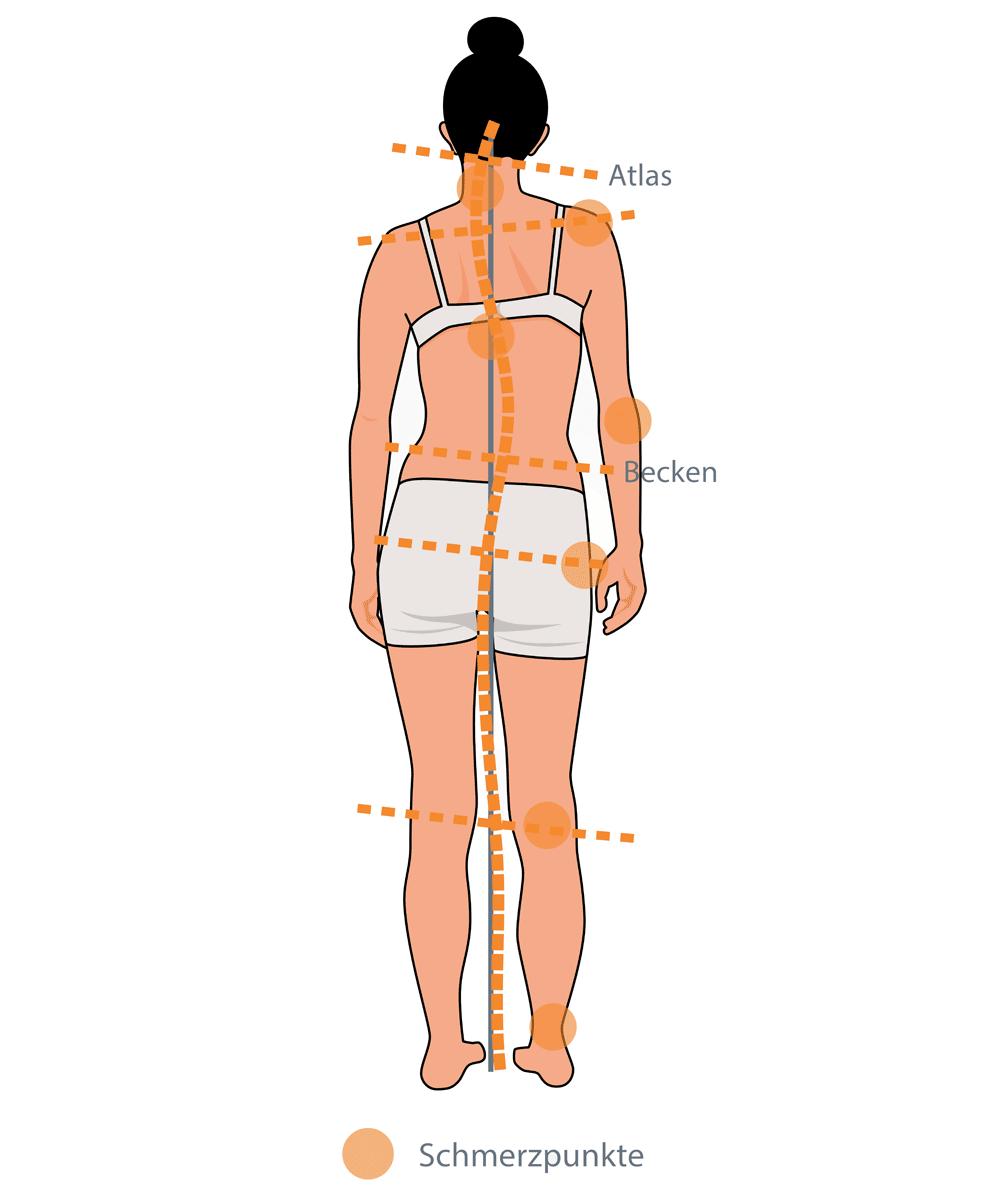 Ungewöhnlich Anatomie Der Nacken Und Schulter Fotos - Physiologie ...