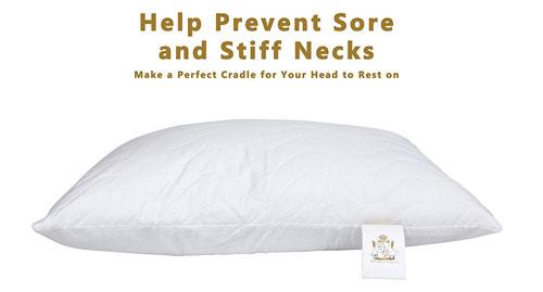 4 empfehlungen f r wasserkissen bei nackenschmerzen. Black Bedroom Furniture Sets. Home Design Ideas