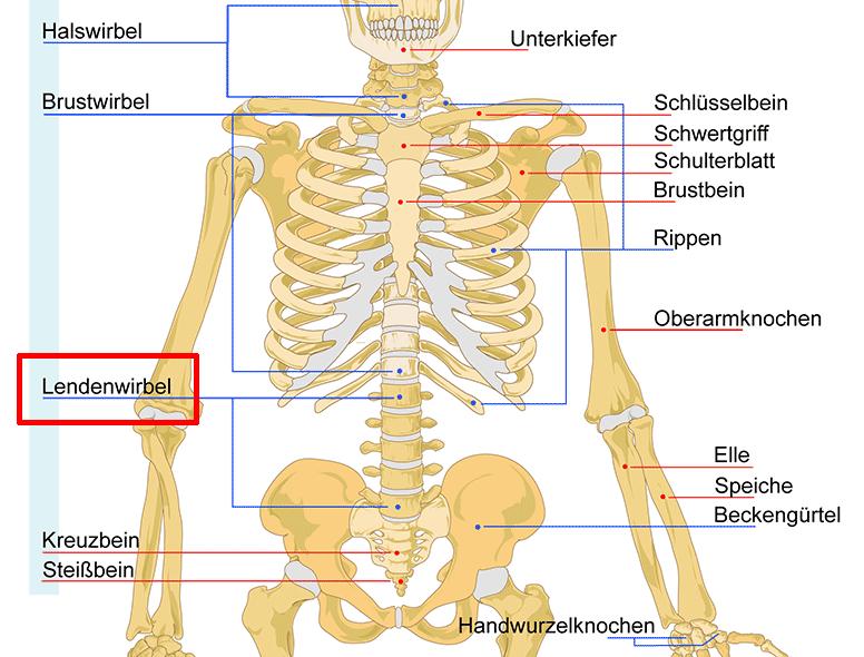 Schmerzen im unteren Rücken - was kann man tun?