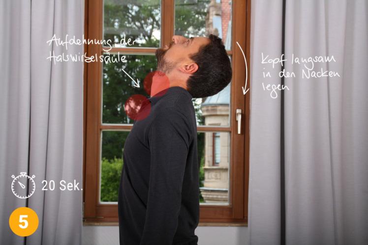 Wichtig ist, dass du nach der Dehnung die Gegenbewegung machst: Richte langsam deinen Kopf auf und lege ihn in deinen Nacken. Schaue zur Decke für etwa 20 Sekunden. Mir hilft es währenddessen den Mund zu öffnen.
