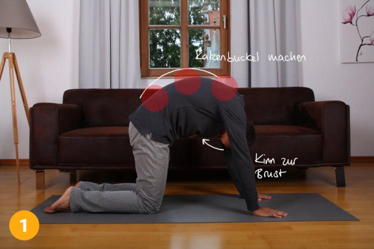 Gehe in den Vierfüßler-Stand und beginne deinen Rücken nach oben zu beugen wie eine Katze. Der Kopf / das Kinn bewegt sich dabei Richtung Brust.