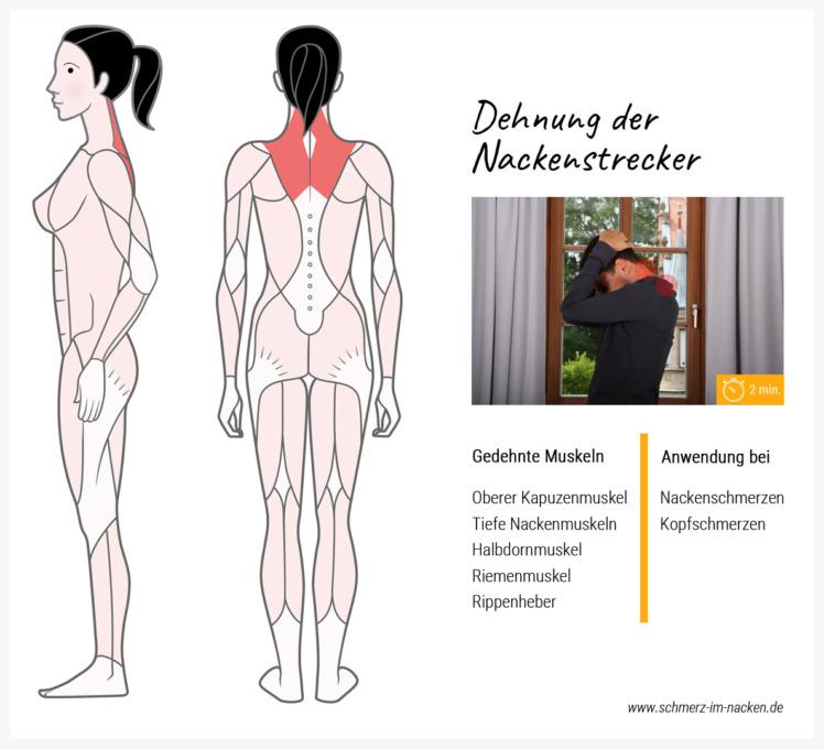 Mit dieser Übung lassen sich Nackenschmerzen und Spannungskopfschmerzen lindern