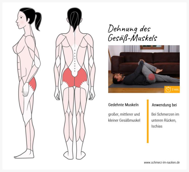Durch die Dehnung des Gesäßmuskels wird der untere Rückenbereich entlastet und Schmerzen gelindert