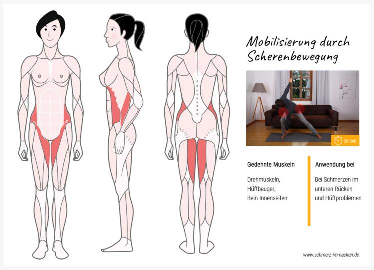 Die klassische Scherenbewegung ist ideal geeignet um deinen unteren Rücken und deine Hüfte in Bewegung zu bekommen
