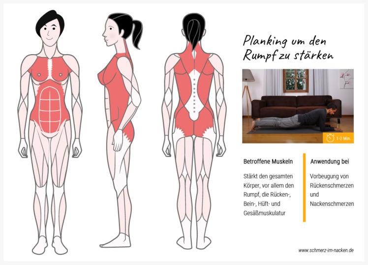 Das Planking ist anstrengend, aber sehr effektiv um den gesamten Körper zu kräftigen