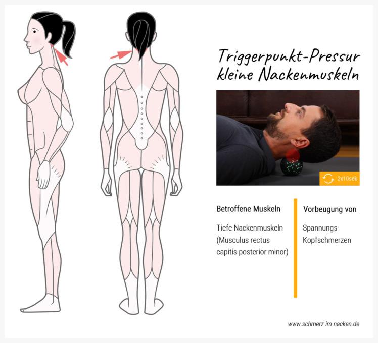 Mit Hilfe eines abgesofteten Balls lassen sich die tiefen Nackenmuskeln drücken und so Schmerzen lösen