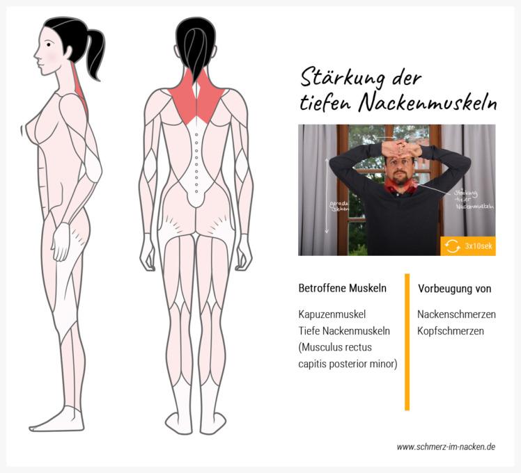 Indem du deinen Kopf gegen die Hand presst, stärkst du deine tiefen Nackenmuskeln und den Kapuzenmuskel