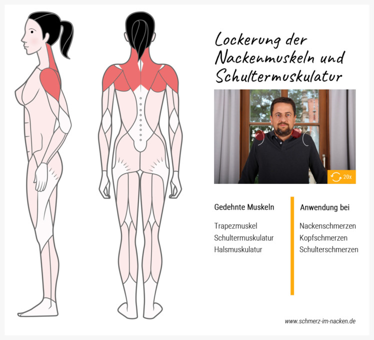 Übung zur Lockerung der Nackenmuskulatur und Schultermuskulatur